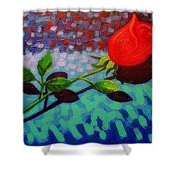 Valentine Rose Shower Curtain by John  Nolan