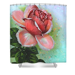 Valentine's Day Shower Curtain