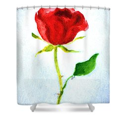 Valentine's Day Rose Shower Curtain by Claire Bull