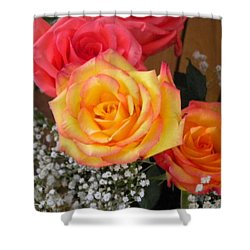 Shower Curtain featuring the painting Valentine's Day Roses 2 by Renate Nadi Wesley