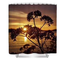 Valerian Sunset Shower Curtain
