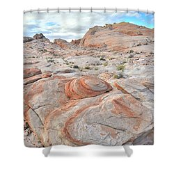 Valley Of Fire Beehives Shower Curtain