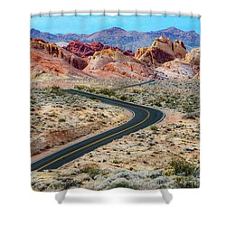 Road Through The Valley Of Fire Shower Curtain