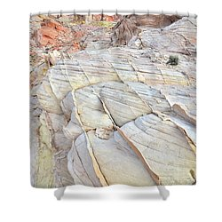 Valley Of Fire Sandstone Shower Curtain