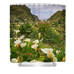 Valley Of The Lilies Shower Curtain