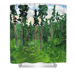 Valley Walk Shower Curtain by Rodger Ellingson