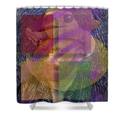 Van Gogh Self Portrait With Felt Hat Shower Curtain