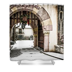 Vanderbilt Holiday Shower Curtain