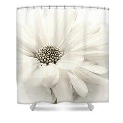 Shower Curtain featuring the photograph Vanilla Ice by Darlene Kwiatkowski