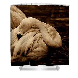 Vanity II Shower Curtain by Susanne Van Hulst