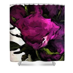 Vase Of Roses With Shadows 2 Shower Curtain