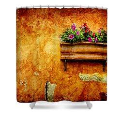 Vase Shower Curtain by Silvia Ganora