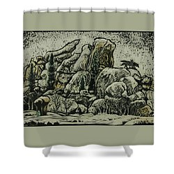 Shower Curtain featuring the drawing Vedauwoo by Dawn Senior-Trask