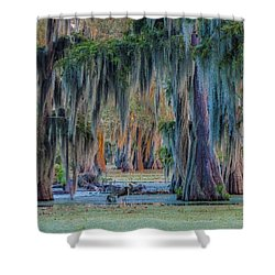 Unveiling The Secrets Of Da Swamp At Cypress Island Preserve Shower Curtain by Kimo Fernandez