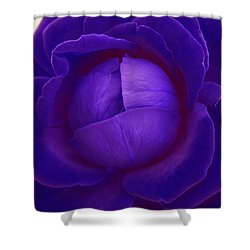 Velvet Blue Lettuce Rose Shower Curtain
