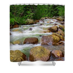 Velvet Green Forest Shower Curtain