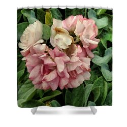 Velvet In Pink And Green Shower Curtain by RC deWinter