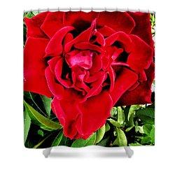 Velvet Red Rose Shower Curtain