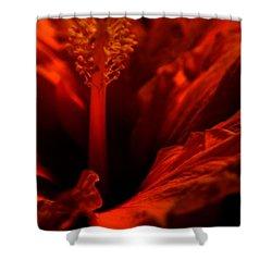 Velvet Seduction Shower Curtain by Sheila Ping