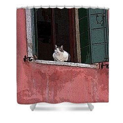 Venetian Cat In Window Shower Curtain
