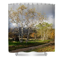 Ventura River Preserve Winter 2017 Shower Curtain