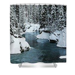 Verdant Creek - Winter 6 Shower Curtain by Stuart Turnbull