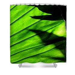 Shower Curtain featuring the photograph Verdant by Silke Brubaker