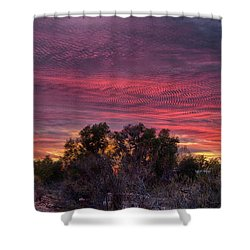 Verigated Sky Shower Curtain