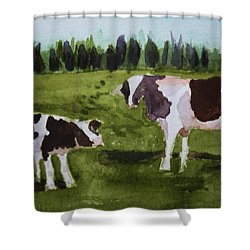 Shower Curtain featuring the painting Vermont Cow And Calf by Donna Walsh
