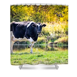 Vermont Farms.01 Shower Curtain