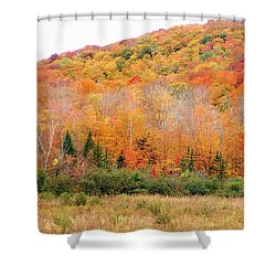 Vermont Foliage Shower Curtain