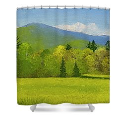 Shower Curtain featuring the painting Vermont Spring by Frank Wilson