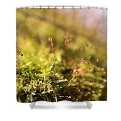 Vernal Impression Shower Curtain