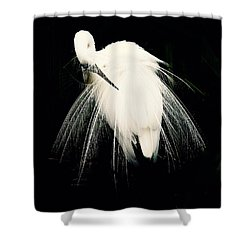Version 2 Shower Curtain