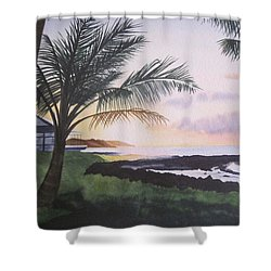 Shower Curtain featuring the painting Version 2 by Teresa Beyer