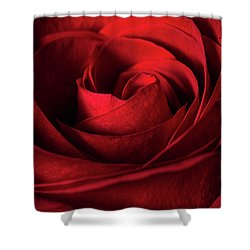Vertical Rose Shower Curtain