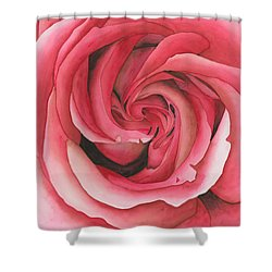 Vertigo Rose Shower Curtain by Ken Powers