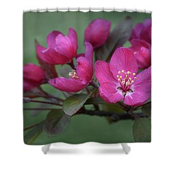 Vibrant Blooms Shower Curtain