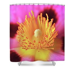 Vibrant Cistus Heart. Shower Curtain