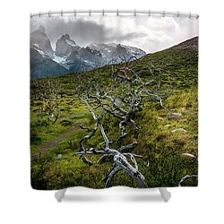 Vibrant Desolation Shower Curtain by Andrew Matwijec