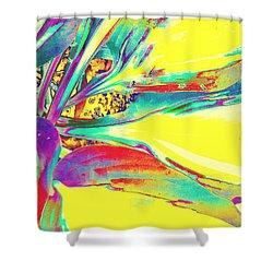 Vibrant Fascination  Shower Curtain by Rachel Hannah