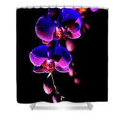 Vibrant Orchids Shower Curtain