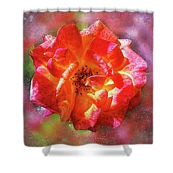 Vibrant Rose Shower Curtain