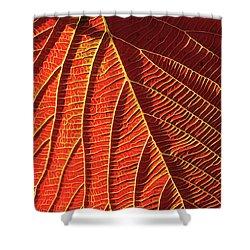 Vibrant Viburnum Shower Curtain