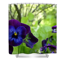 Shower Curtain featuring the photograph Vibrant Violets In Purple by Rebecca Overton
