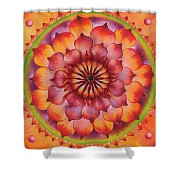 Vibration Of Joy And Life Shower Curtain