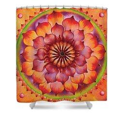 Vibration Of Joy And Life Shower Curtain by Anna Ewa Miarczynska