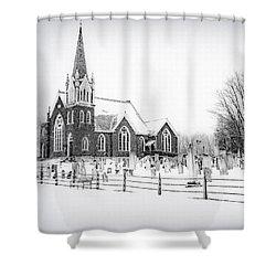 Victorian Gothic Shower Curtain