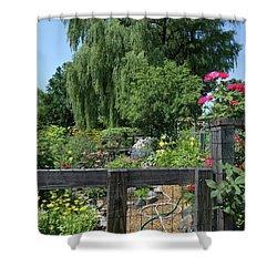 Victory Garden Lot And Willow Tree, Boston, Massachusetts  -30958 Shower Curtain