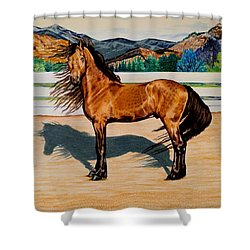 Viento Shower Curtain